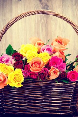 iPhone Wallpaper Colorful roses, basket, teddy bear