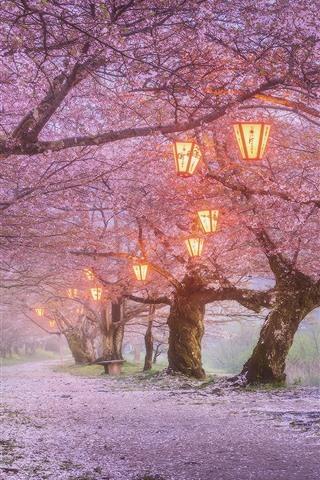 iPhone Wallpaper Japan, sakura blossom, lanterns, spring