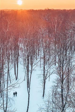 iPhone Wallpaper Lithuania, Kaunas, trees, park, sunset, snow, winter