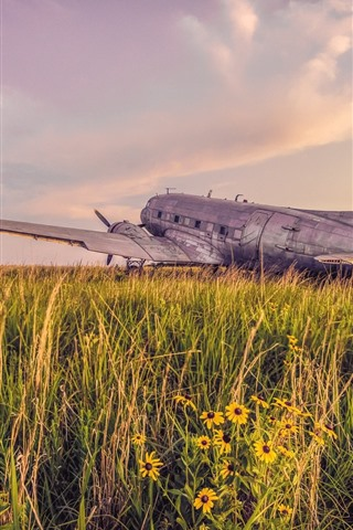 iPhone Wallpaper Old plane, grass