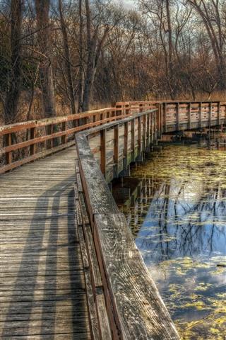 iPhone Wallpaper Park, trees, bridge, pond, autumn