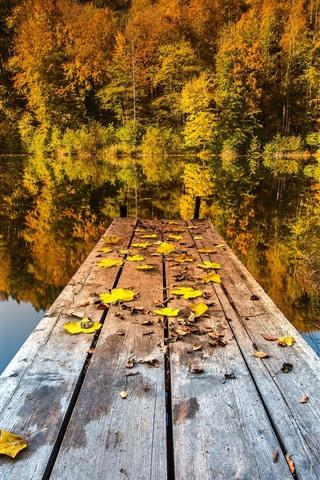 iPhone Wallpaper Trees, lake, pier, autumn