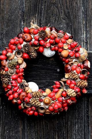 iPhone Wallpaper Wreath, berries, nuts