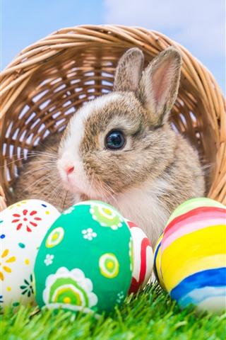 iPhone Обои Разноцветные пасхальные яйца, кролик, корзинка, зеленая трава