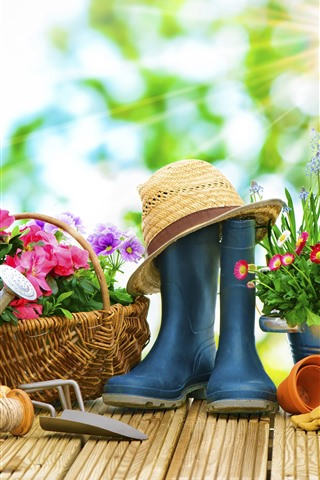 iPhone Wallpaper Colorful flowers, garden, kettle, hat, sun rays