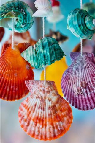 iPhone Papéis de Parede Conchas coloridas, decoração