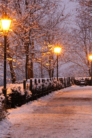 iPhone Wallpaper Czech Republic, park, trees, snow, lamps, bench, winter, night