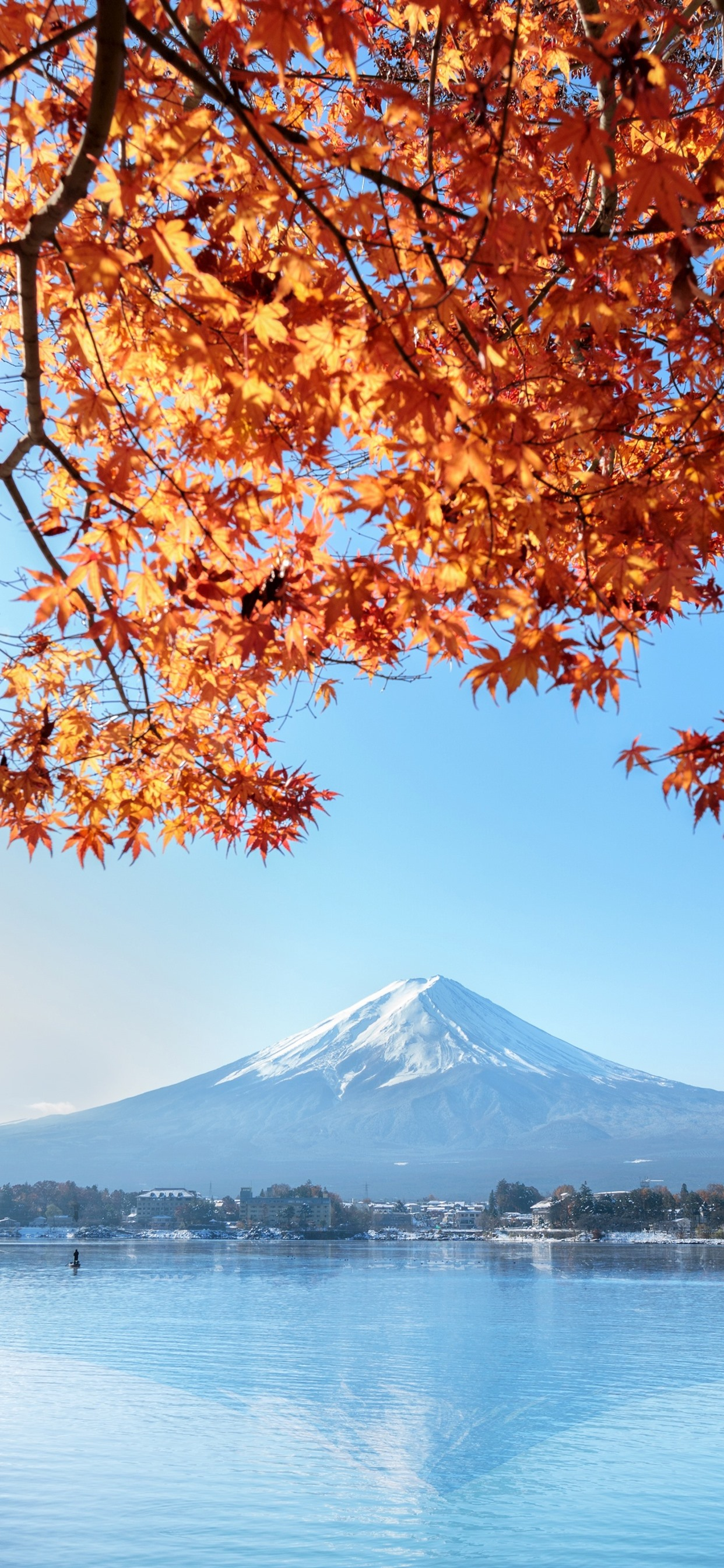 Fuji Mountain Red Maple Leaves Lake Autumn Japan