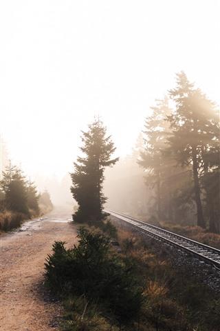 iPhone Wallpaper Morning, trees, railroad, sun rays, fog
