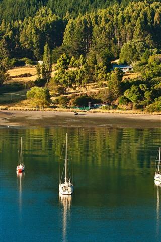 iPhone Wallpaper New Zealand, Picton, sea, trees, boats, sunshine