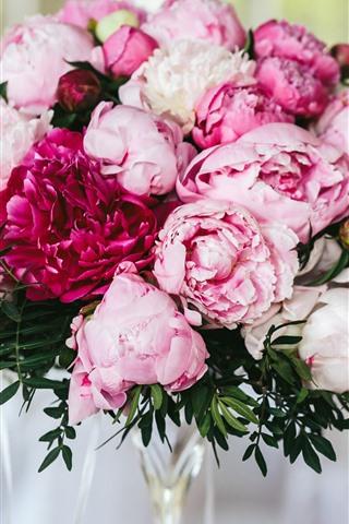 iPhoneの壁紙 ピンクの牡丹、花、花束、かすんでいる背景