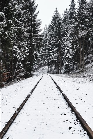 iPhone Wallpaper Railroad, trees, snow, winter