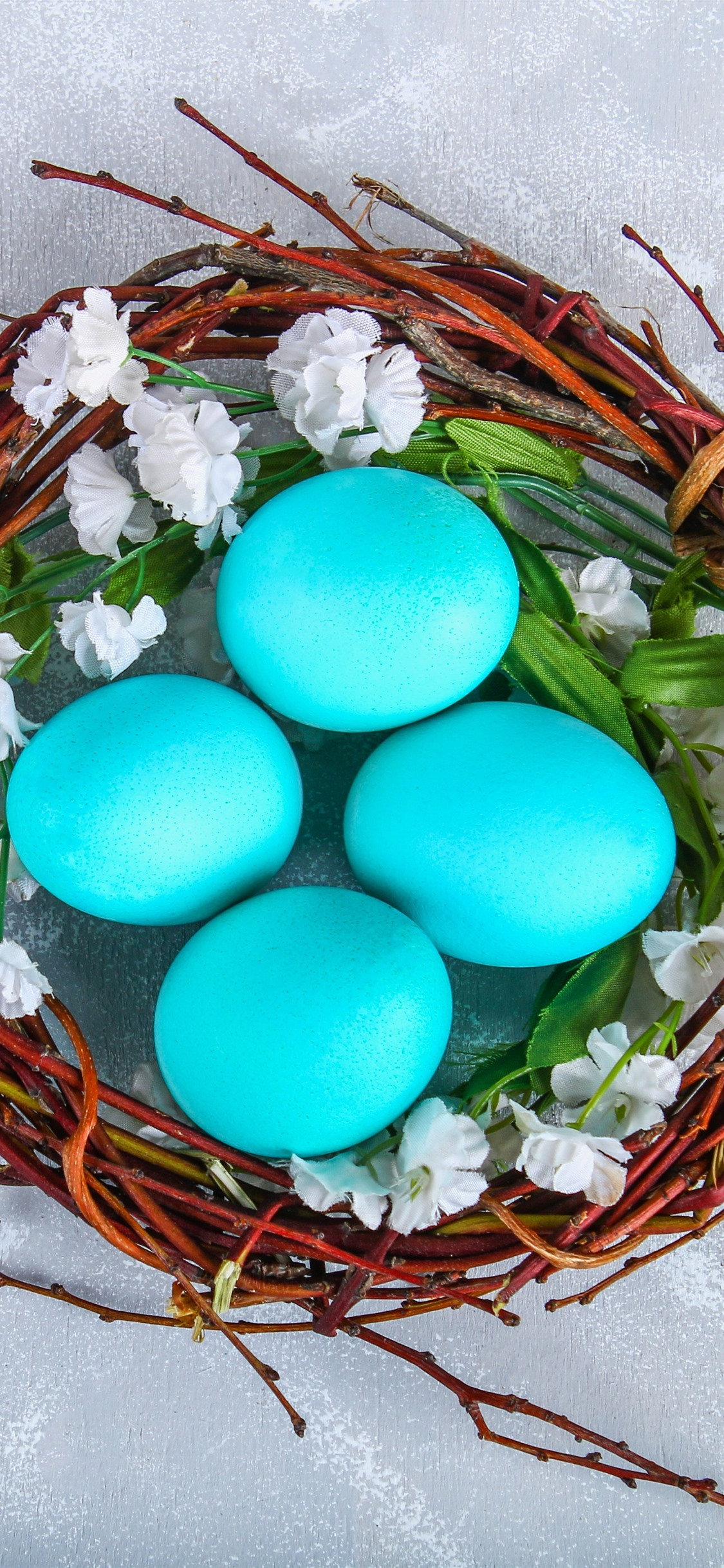 Blue Easter Eggs Nest 1242x2688 Iphone Xs Max Wallpaper