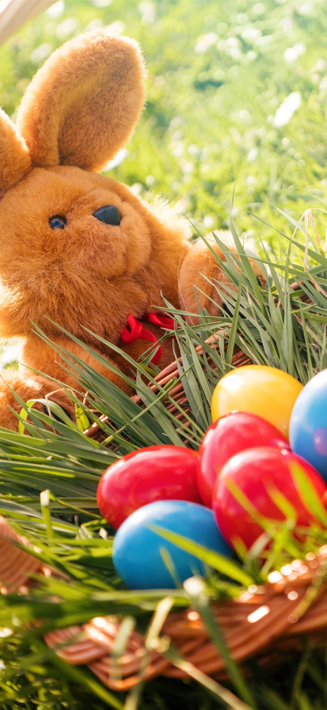 Colorful Eggs Rabbit Toy Grass Basket Easter 1242x2688