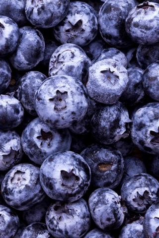 iPhone Wallpaper Many blueberries, berries, fruit