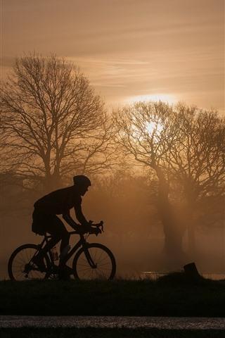 iPhone Wallpaper Trees, fog, morning, bike, sport, silhouette