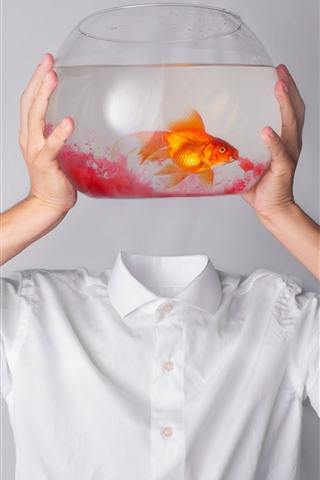 iPhone Wallpaper Goldfish, hands, T-shirt, creative picture