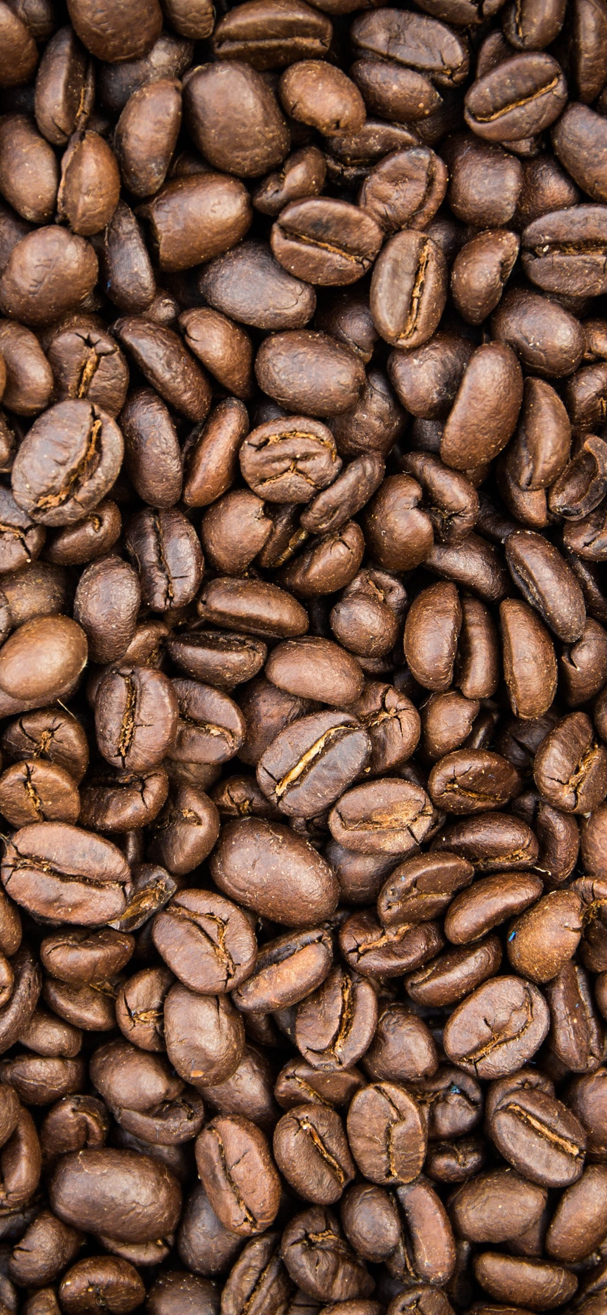 Lot Of Coffee Beans 1242x2688 Iphone Xs Max Wallpaper
