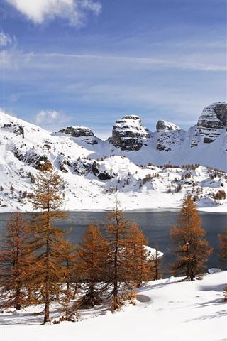 iPhone Wallpaper White snow, winter, trees, lake