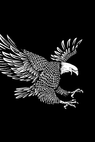 Eagle Wings Flight Black Background Art Picture 640x960