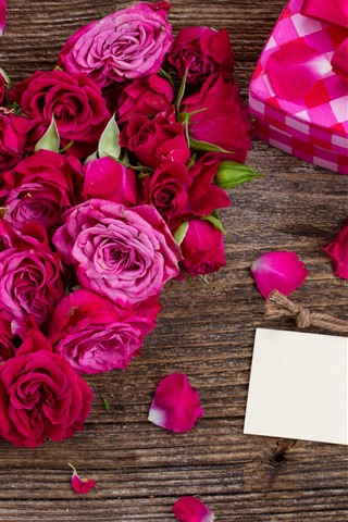 iPhone Wallpaper Red and pink roses, petals, gift, romantic