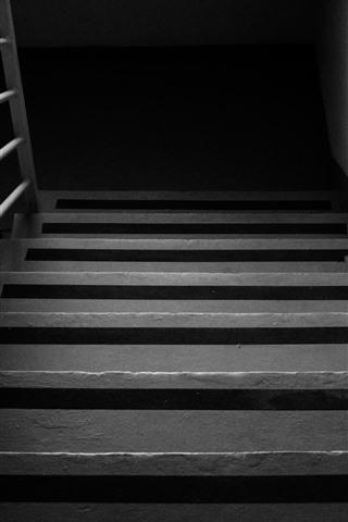 Ladder black and white