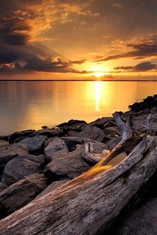 iPhone Wallpaper Rocks, dry trunk, sunset, river