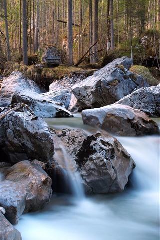 iPhone Wallpaper Rocks, stream, forest
