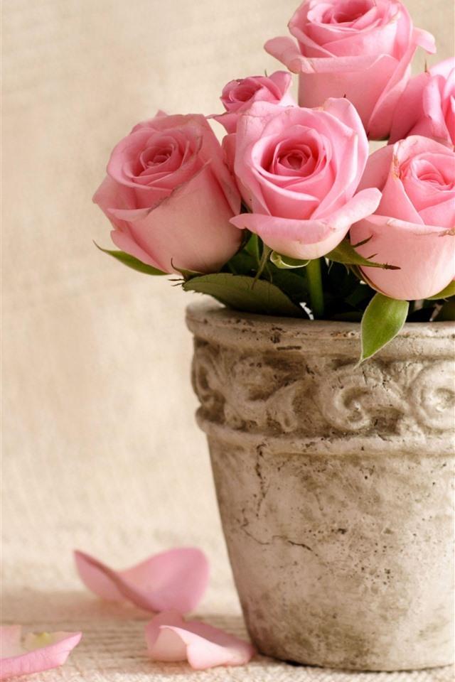 Обои на телефон розы в вазе