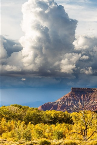 iPhone Wallpaper Zion National Park, clouds, trees, autumn, USA