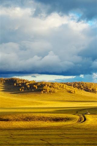 iPhone Wallpaper Bashang grassland, golden autumn, China