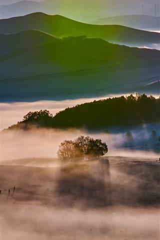 iPhone Wallpaper Sun rays, trees, fog, autumn morning, Bashang grassland, China