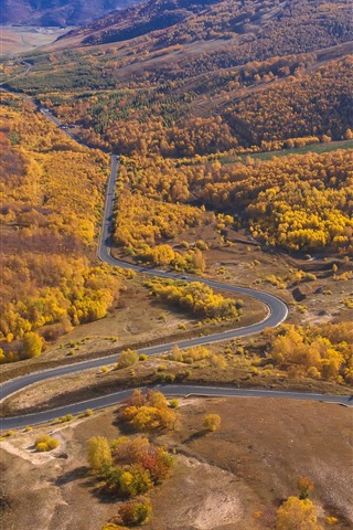 iPhone Wallpaper Wulan Butong Grassland, beautiful autumn, road, trees, mountains