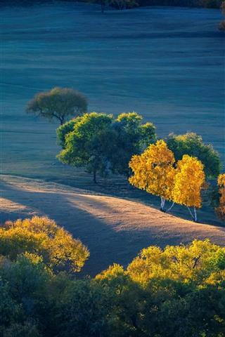 iPhone Wallpaper Autumn, trees, grassland