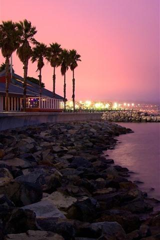 iPhone Wallpaper Coast, sea, palm trees, lights, rocks, night