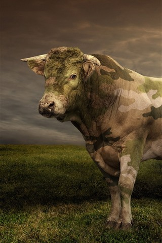 iPhone Wallpaper Cow, camouflage, helicopter, grass, clouds, creative picture