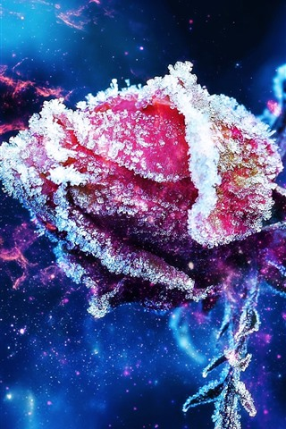 iPhone Wallpaper Red rose bud, frost, ice crystal, stars