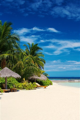 iPhone Wallpaper Tropical, beach, resort, palm trees, sea, blue sky