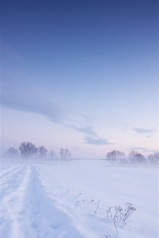iPhone Wallpaper Cold winter, thick snow, white world, fog