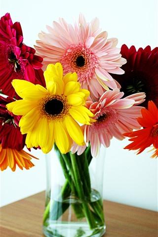 iPhone Wallpaper Colorful gerbera flowers, vase, table