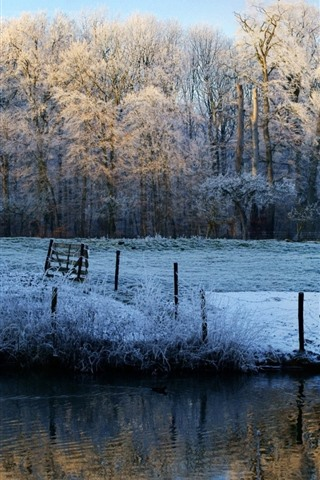iPhone Wallpaper Winter morning, trees, river, snow, frost