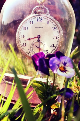 iPhone Papéis de Parede Relógio, vidro, pansies