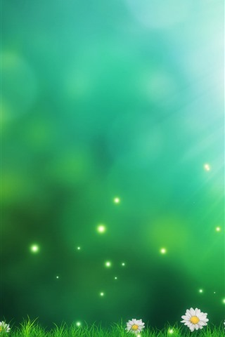 iPhone Wallpaper Daisies, green grass, sun rays, creative picture