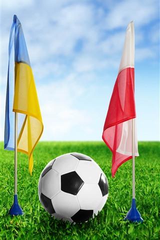 iPhone Wallpaper Football, flag, green grass