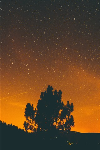 iPhone Wallpaper Lonely tree, starry, stars, silhouette, night