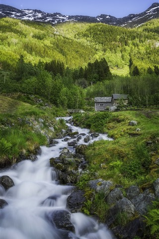 iPhone Wallpaper Norway, forest, creek, rocks, mountain, hut, green