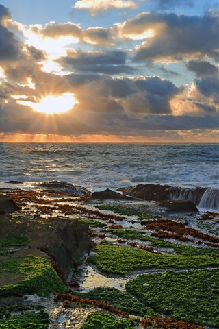 iPhone Wallpaper Sea, ocean, sunset, sun rays, coast, moss