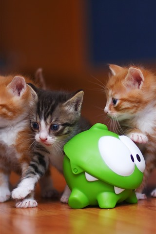 iPhone Wallpaper Some kittens and frog toy