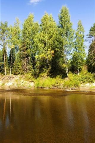 iPhone Wallpaper Trees, river, sunshine, nature scenery