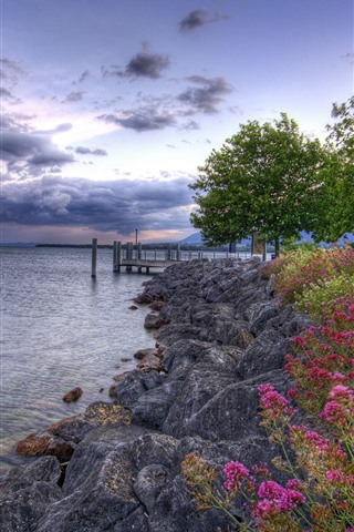 iPhone Wallpaper Flowers, rocks, pier, lake, trees